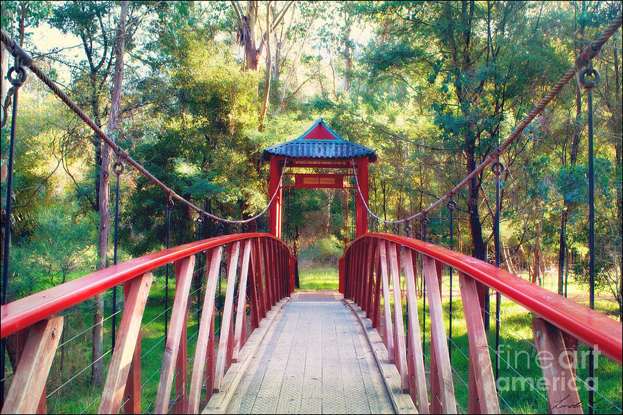 Chinese Bridge Wandiligong Photograph  - Chinese Bridge Wandiligong Fine Art Print