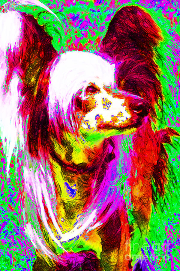 Chinese Crested Dog 20130125v2 Photograph