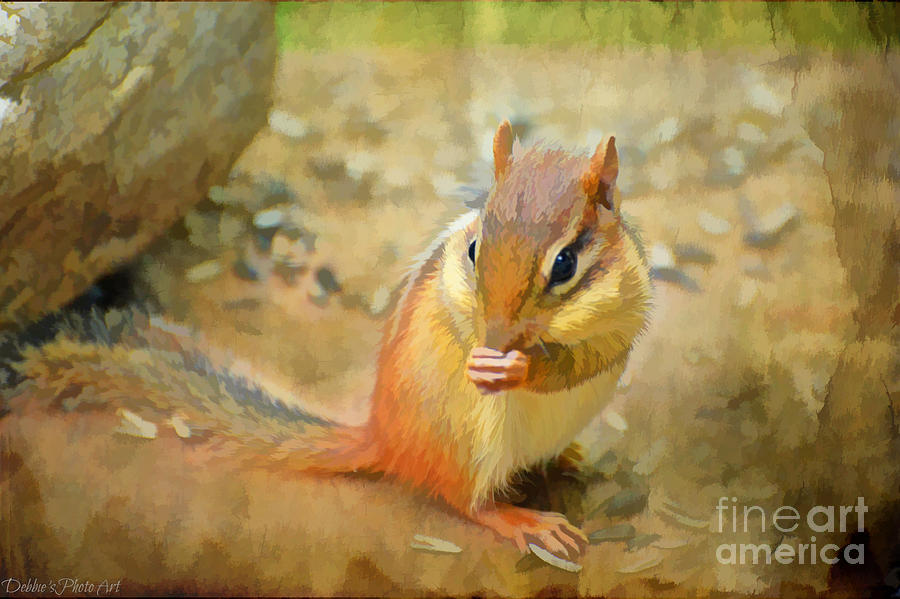 Chipmonk - Digital Paint I Photograph