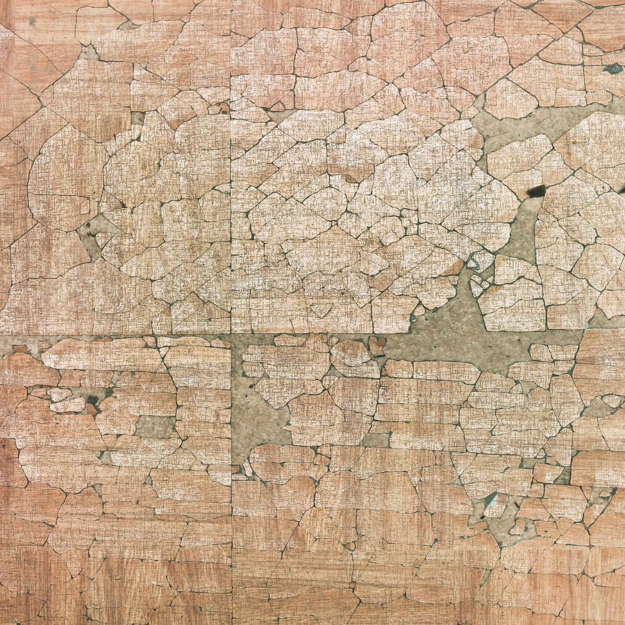 Backdrop Photograph - Chipped Veneer by Tom Gowanlock