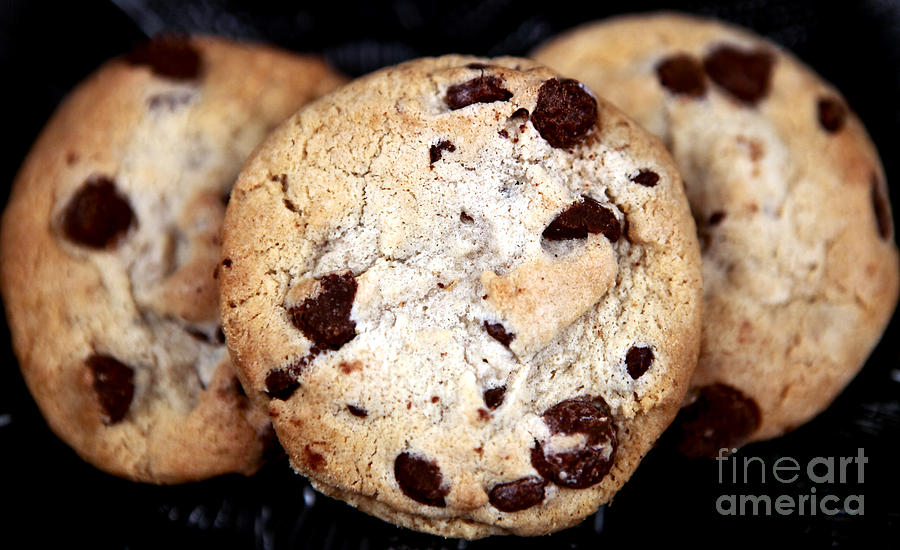 Chocolate Chip Cookies Photograph  - Chocolate Chip Cookies Fine Art Print