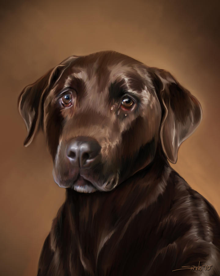 Chocolate Lab Painting - Chocolate Lab by Michael Spano