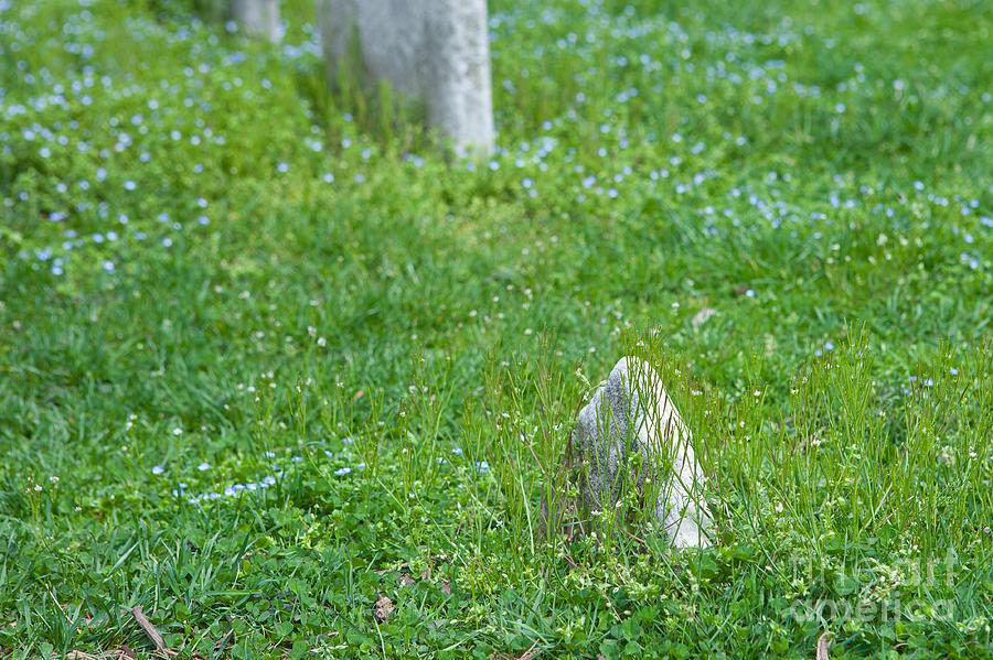 Christ Church Photograph - Christ Church Graveyard by Kay Pickens