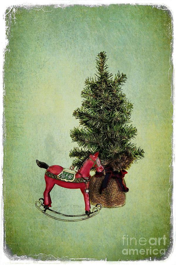 Christmas Cheer Photograph
