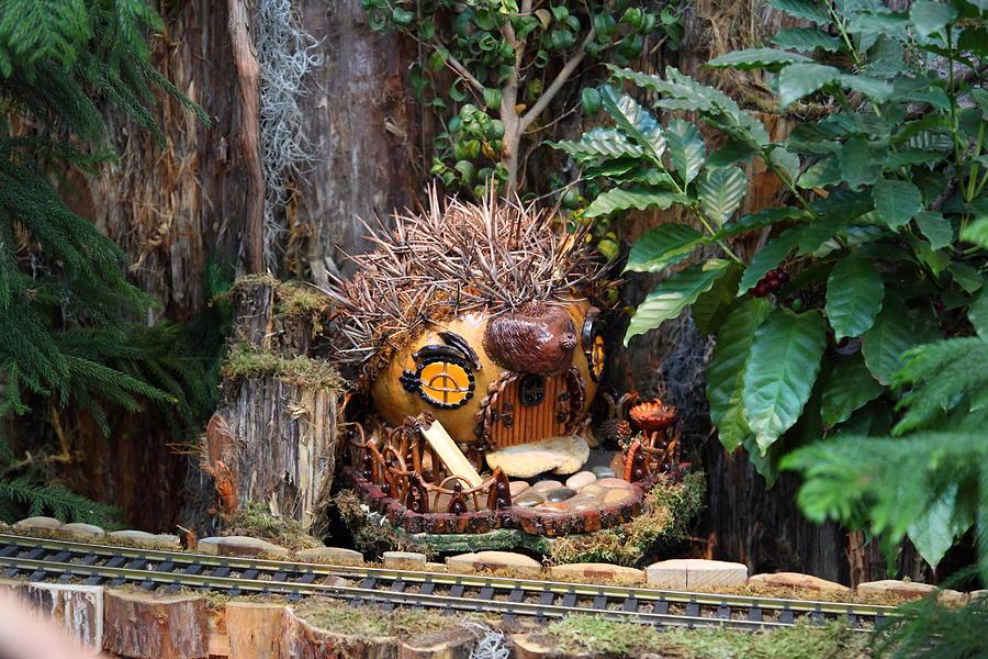 Christmas display us botanic garden 011322 photograph by dc photographer for Botanical gardens dc christmas