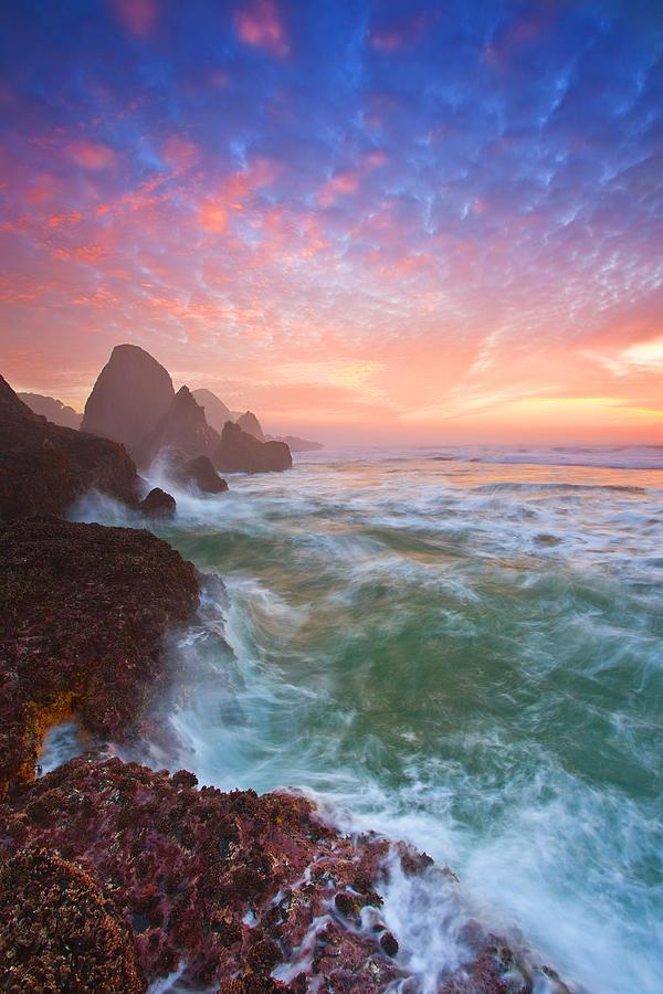 Oregon Photograph - Christmas Eve Sunset by Darren  White