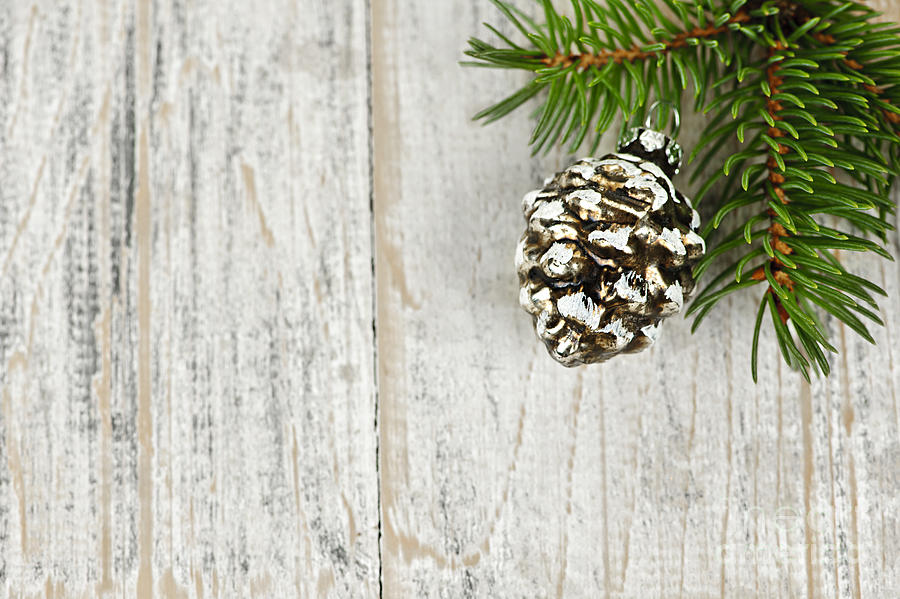Christmas ornament on pine branch photograph by elena for Large christmas pine cones