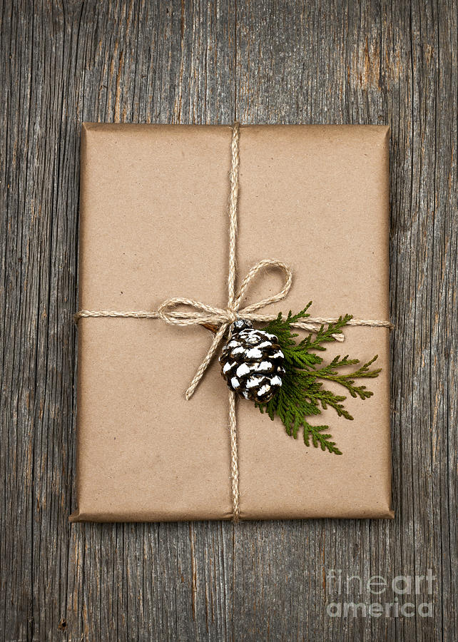 Package Photograph - Christmas Present  by Elena Elisseeva