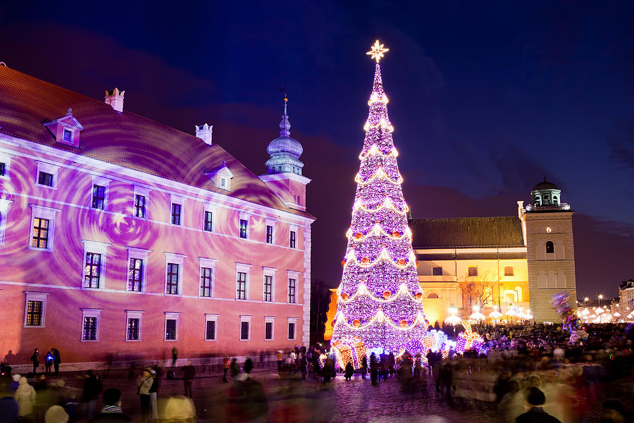 Christmas Tree In Warsaw Old Town Photograph  - Christmas Tree In Warsaw Old Town Fine Art Print