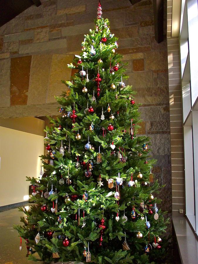 Best meijer christmas trees garden