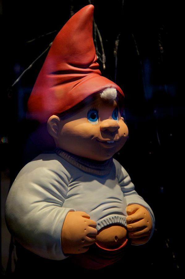 Chubby Elf Photograph