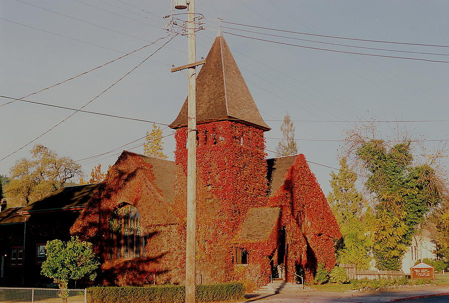 Red Photograph - Church Vines by Trent Mallett