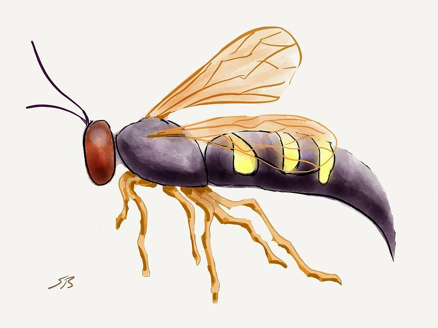 Cicada Killer Wasp Digital Art