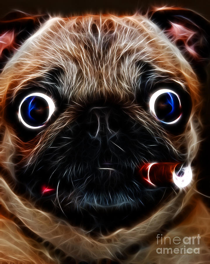 Cigar Puffing Pug - Electric Art Photograph