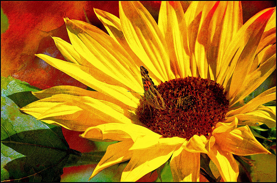 Sunflower Painting - Circle Of Life............. by Tanya Tanski