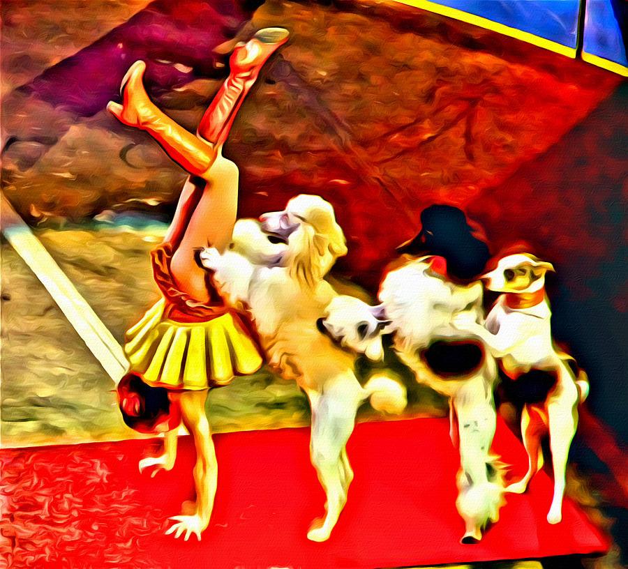 Circus Dog Act Photograph By Alice Gipson