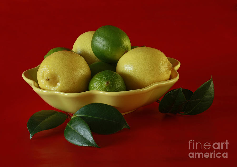 Citrus Passion Photograph