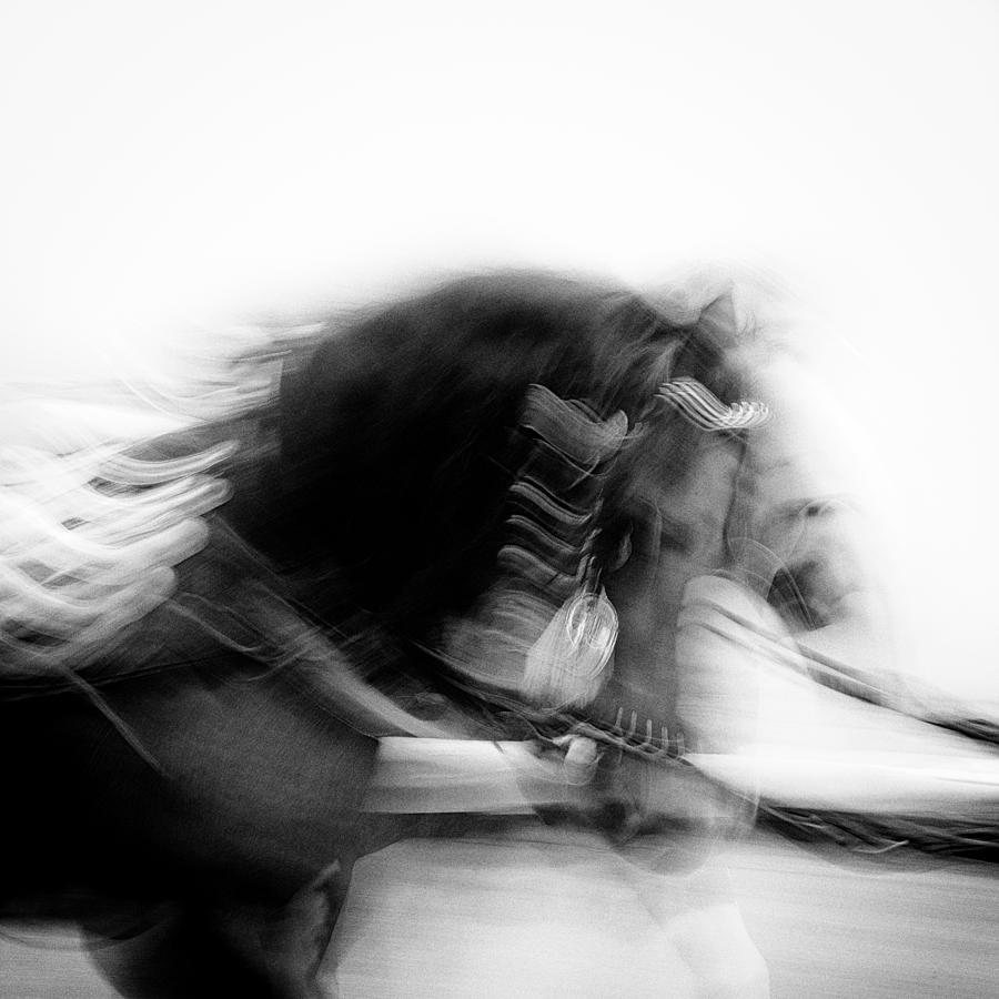 Horses Photograph - City Horses by Dave Bowman