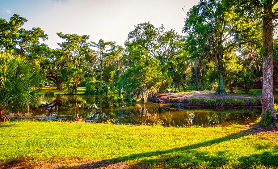 City Park New Orleans Photograph By Steve Harrington