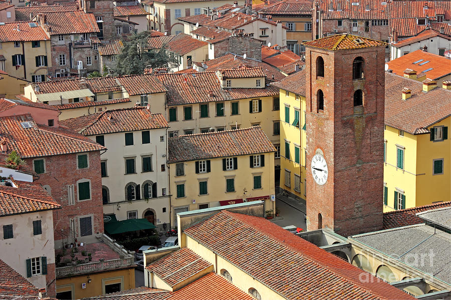 City View Of Lucca With The Clock Tower Photograph  - City View Of Lucca With The Clock Tower Fine Art Print
