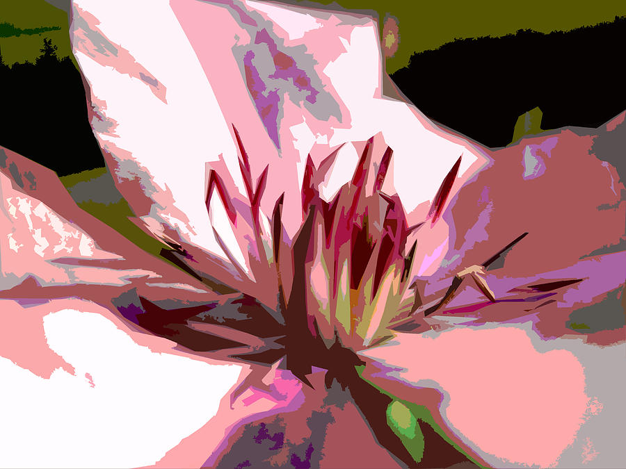 Clematis Digital Art