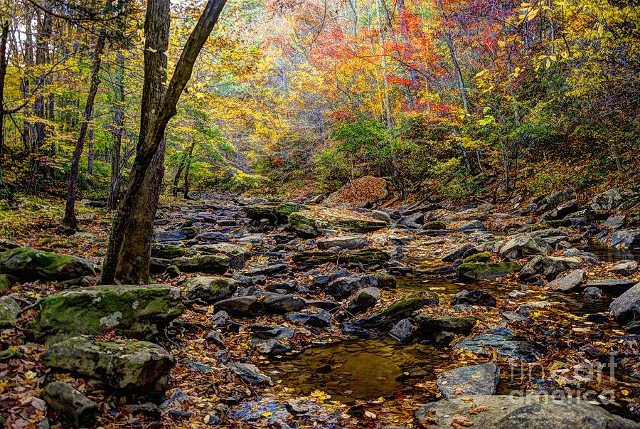 Hdr Photograph - Clifty Creek In Hdr by Paul Mashburn
