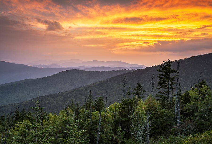 Clingmans Dome Great Smoky Mountains - Purple Mountains Majesty Photograph