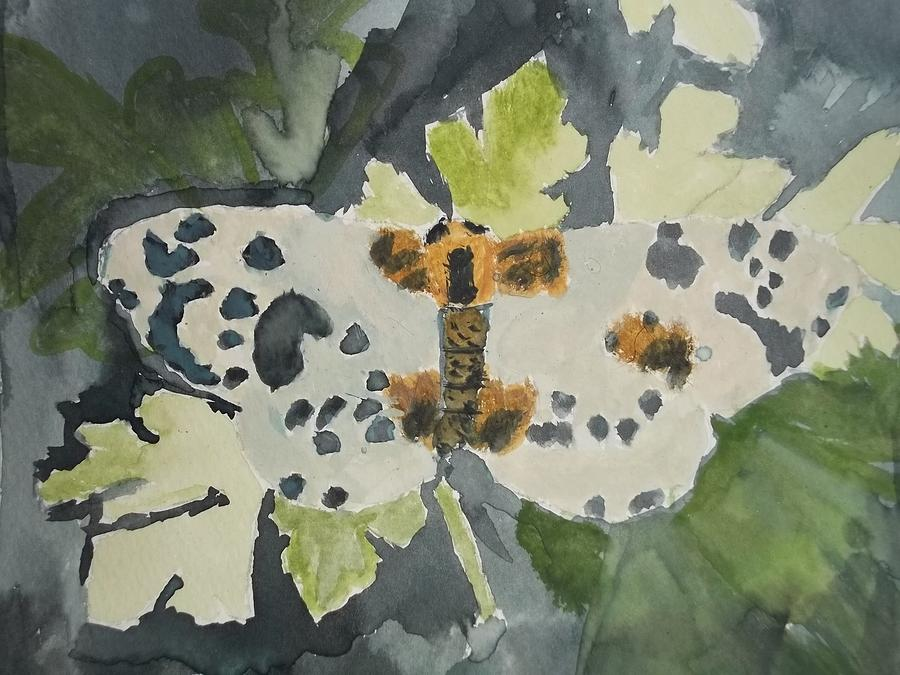 Clouded Magpie Watercolor On Paper Painting  - Clouded Magpie Watercolor On Paper Fine Art Print