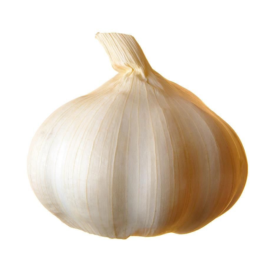 Clove Of Garlic Photograph by Jim Hughes