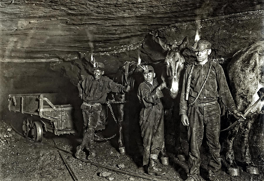 Coal Mine Mule Drivers  1908 Photograph  - Coal Mine Mule Drivers  1908 Fine Art Print