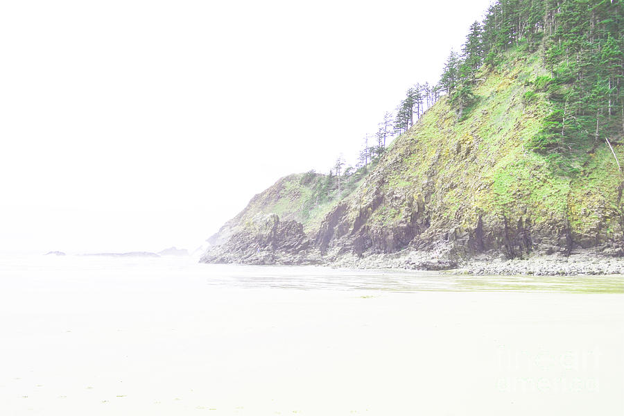 Coastal Oregon Photograph