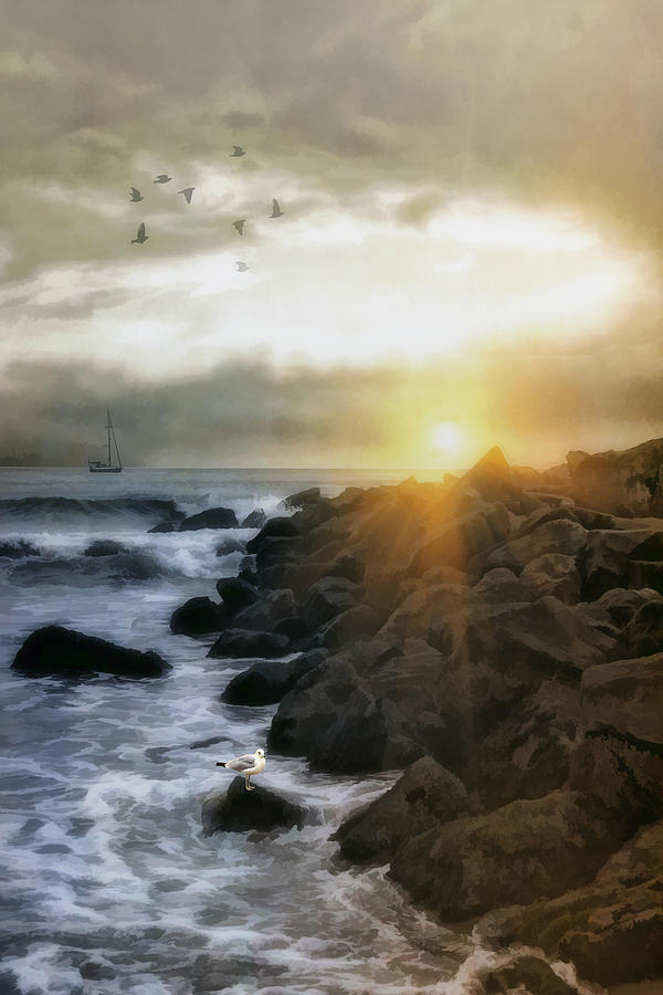 Coastal Sunrise Photograph  - Coastal Sunrise Fine Art Print