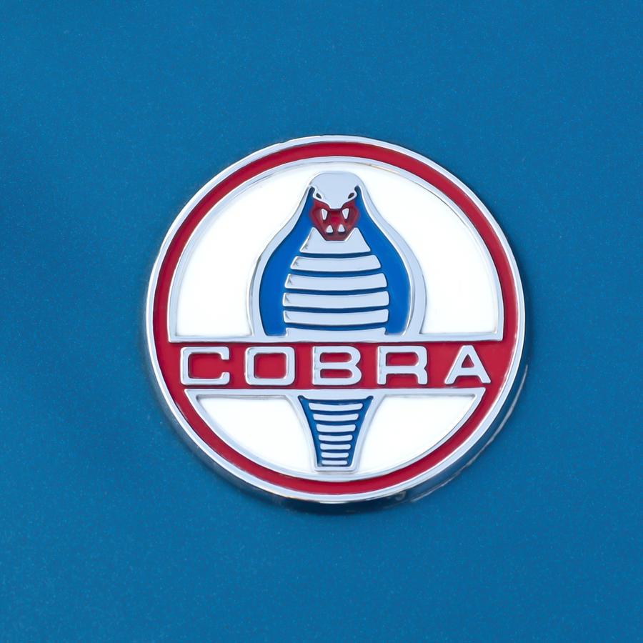 Cobra Emblem Photograph