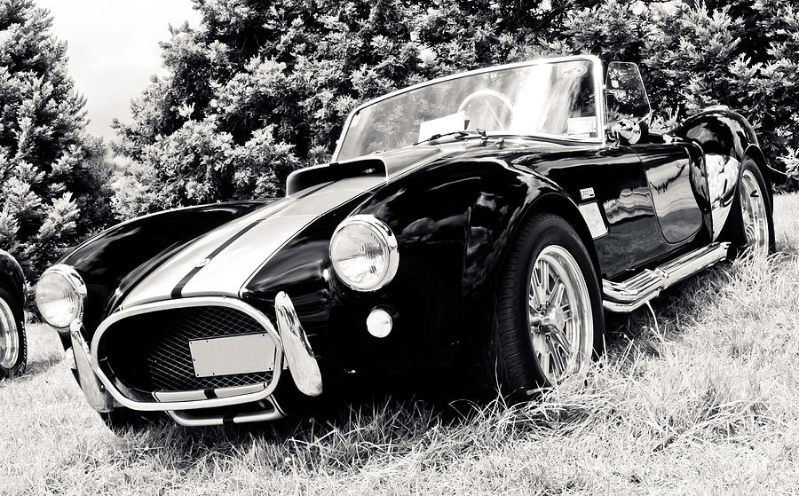 Cobra Sports Car Photograph  - Cobra Sports Car Fine Art Print