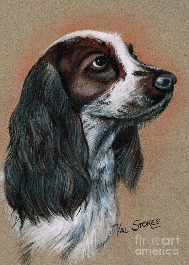 Cocker Spaniel Mixed Media - Cocker Spaniel by Val Stokes