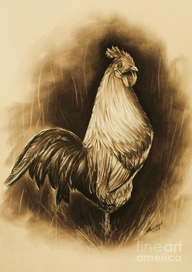 Cockerel/rooster  Painting  - Cockerel/rooster  Fine Art Print