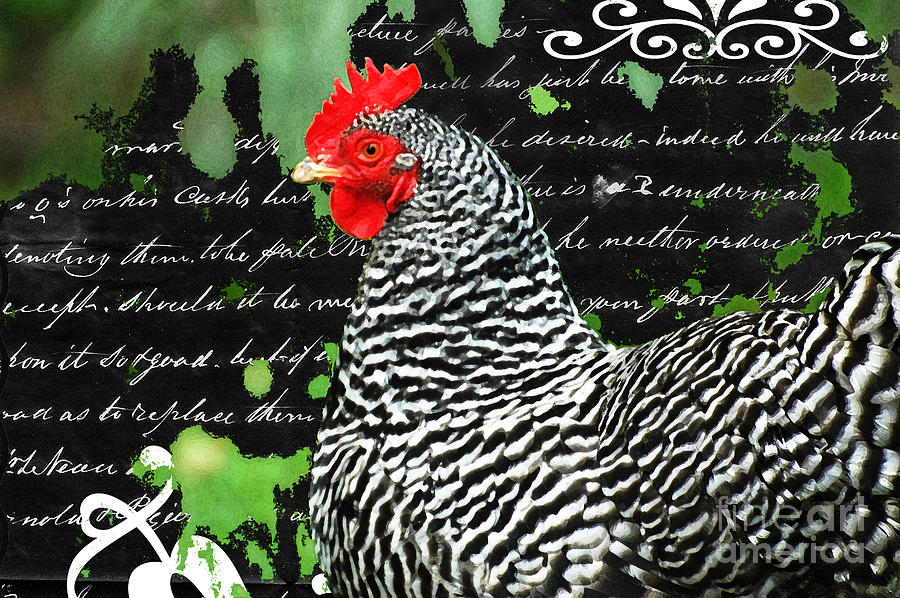 Coco French Country Chicken Print Digital Art  - Coco French Country Chicken Print Fine Art Print