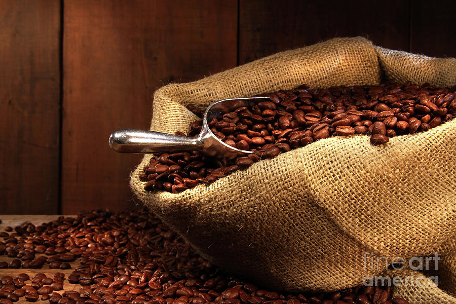 Coffee Beans In Burlap Sack Photograph