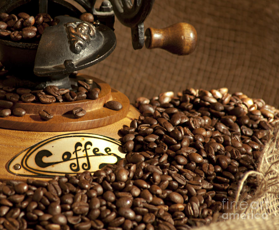 Coffee Grinder With Beans Photograph