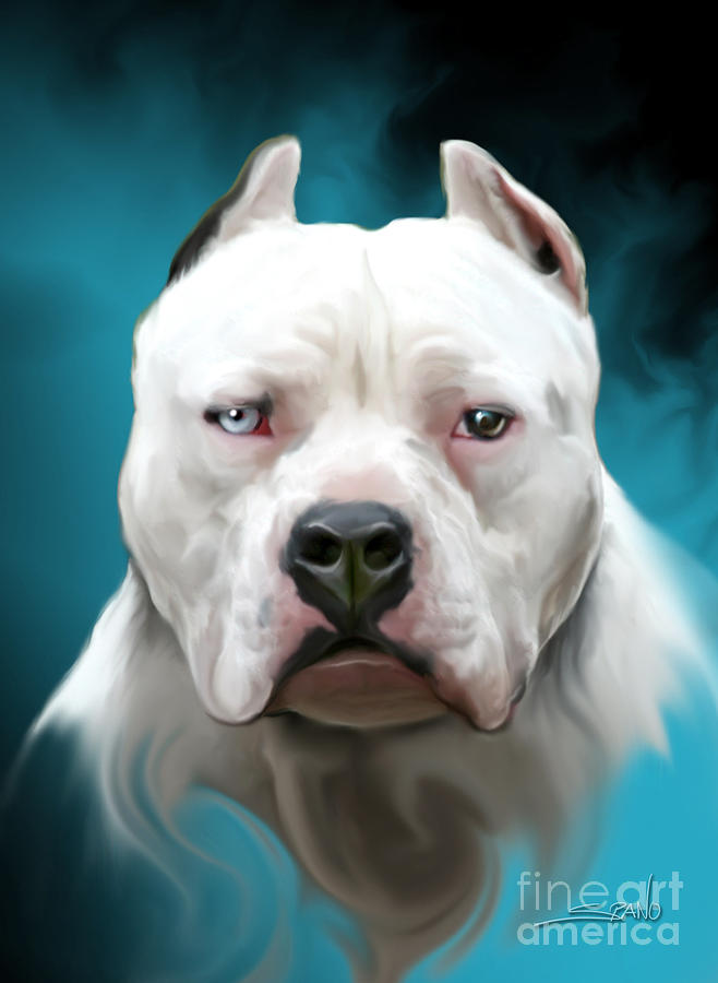 Cold As Ice- Pit Bull By Spano Painting  - Cold As Ice- Pit Bull By Spano Fine Art Print