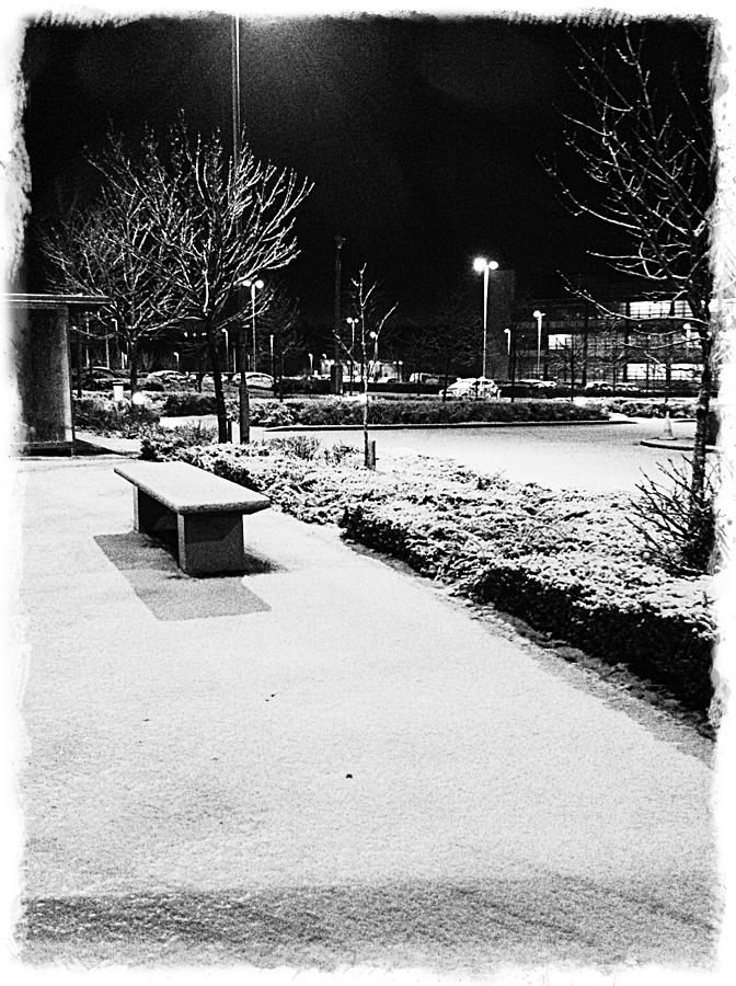 Cold Nights Journey Home Photograph