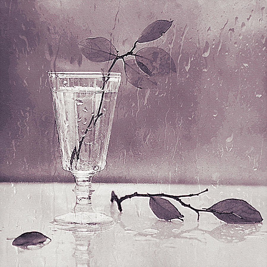 3d Black and White Still Life art Cold Rain