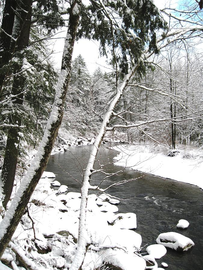 Landscape Photograph - Cold River Greeting Card by Will Boutin Photos