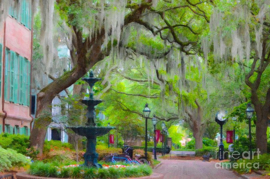 College Of Charleston Photograph