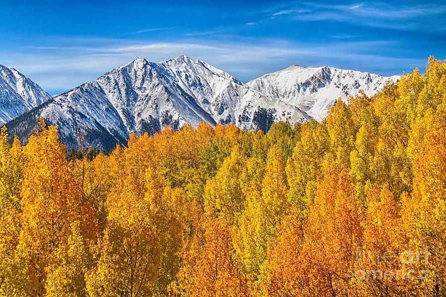 Colorado Rocky Mountain Autumn Beauty Photograph