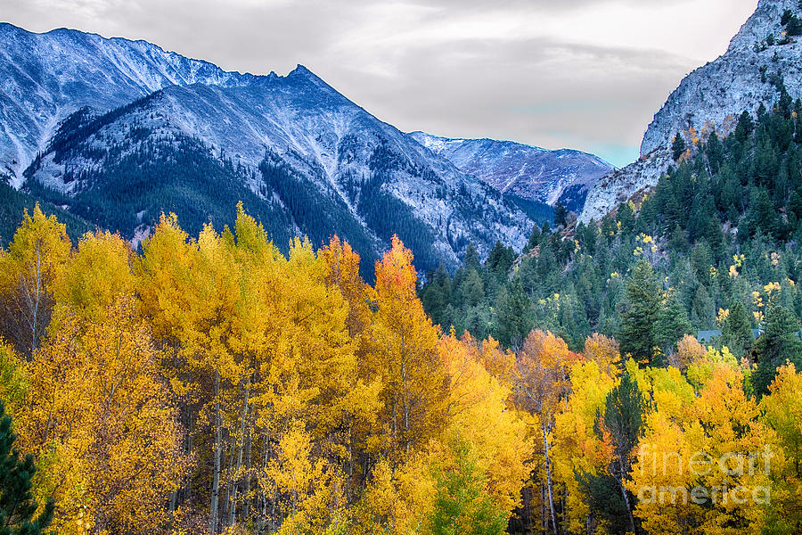 Colorful Crested Butte Colorado Photograph