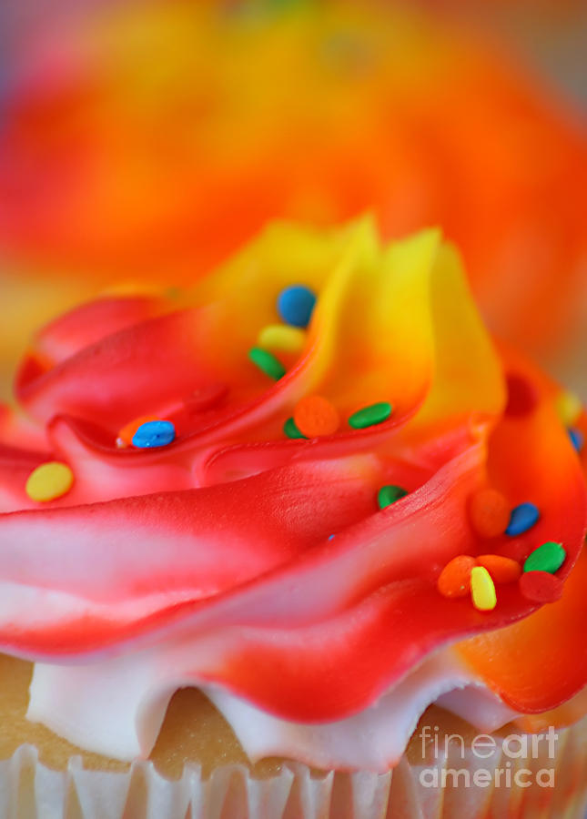 Colorful Cup Cake Photograph