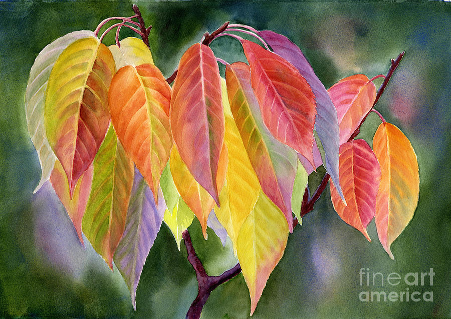 Colorful Fall Leaves With Background Painting