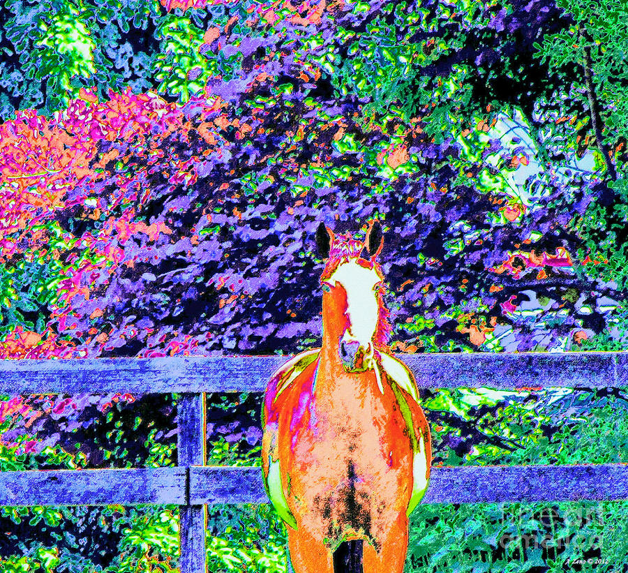 Colorful Horse Photograph  - Colorful Horse Fine Art Print