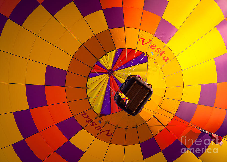 America Photograph - Colorful Underbelly by Inge Johnsson